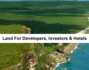 Developers Investor